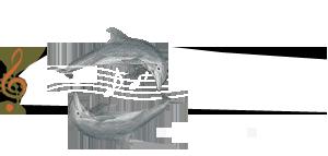 Μουσικό Σχολείο Ρεθύμνου | Γυμνάσιο – Λύκειο